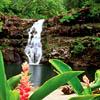 Водопад - Багамские острова. Travel.Ru