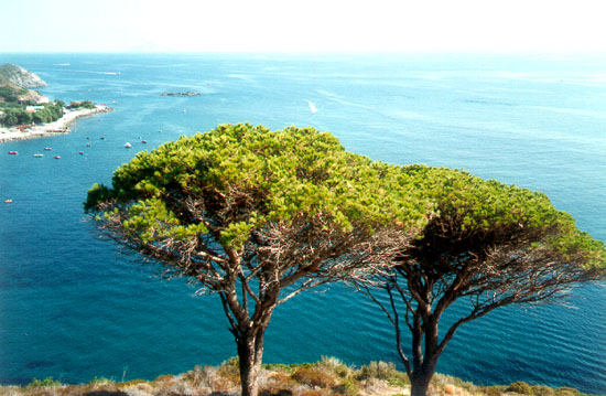 фото остров эльба
