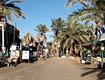 Дикий Дахаб - фотографии из Египта - Travel.ru