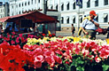 Финляндия - фотографии из Финляндии - Travel.ru