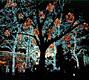 Рaссказ NY о Рождестве, Новом Годе и методах их празднования - фотографии из США - Travel.ru