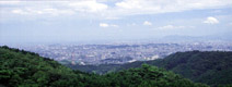 Япония - фотографии из Японии - Travel.ru