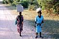 Дзимбадзамабве, можно просто Зимбабве - фотографии из Зимбабве - Travel.ru
