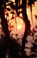 """""""Русский экстремальный проект"""" в Мексике - фотографии из Мексики - Travel.ru"""