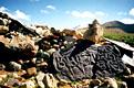 Тибет - фотографии из Китая - Travel.ru