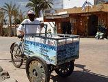 продавец газет / Фото из Египта