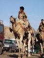 вот такие мальчики и катают туристов / Фото из Египта