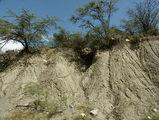 размытые холмы / Фото из Доминиканской Республики