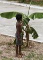 маленький доминиканец под банановым кустом / Фото из Доминиканской Республики