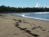 океанский северный берег / Фото из Доминиканской Республики