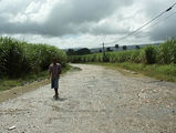 после ливня / Фото из Доминиканской Республики