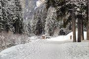 Вдоль горной реки / Фото из Италии