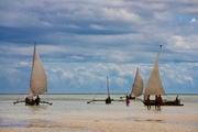 У побережья Занзибара