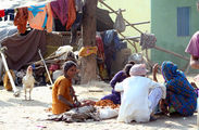 Люди живут под навесами / Фото из Индии