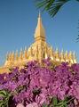 Па Тат Луан - Золотая Ступа / Фото из Камбоджи