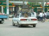 Пномпень. Домашний любимец / Фото из Камбоджи