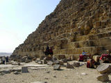 Верблюды вокруг пирамиды / Фото из Египта