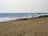 Пляж в Маспаломасе, Тенерифе