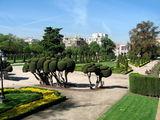 Аллеи Центрального парка / Фото из Испании