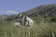 Где-то в этих краях родился Зевс / Фото из Греции