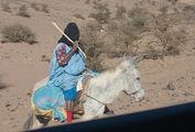 встреча на дороге / Фото из Марокко