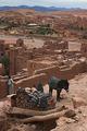 реставратор и его мохнатый помощник / Фото из Марокко