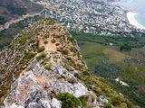 Голова Льва / Фото из ЮАР
