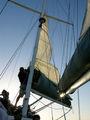 Отправляются яхты / Фото из ЮАР