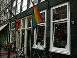 '...голубые ели. и пили' / Нидерланды