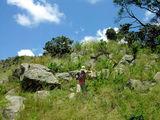Можно гулять пешком / Фото из Свазиленда