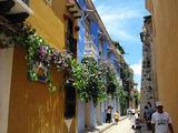 Улицы в цветах / Фото из Колумбии