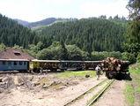 платформа с дровами... / Румыния