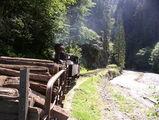 ...цепляется сразу за паровозом / Румыния
