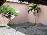 Пальма во внутреннем дворике / Фото из Венесуэлы