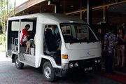 Подвозка-бержайка / Фото из Малайзии