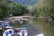 Обмелевшая речка / Фото из Малайзии