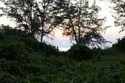 Закат / Фото из Малайзии