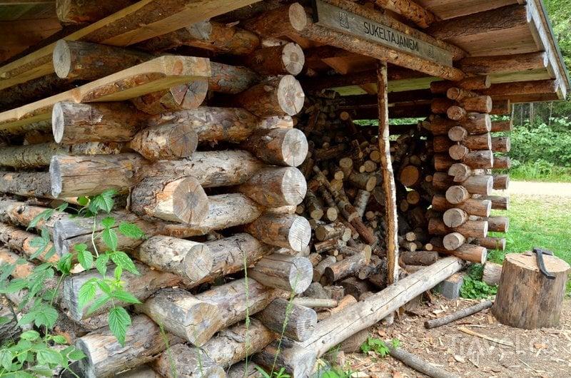 Заготовленные для гостей парка дрова
