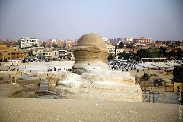 Сфинкс. Вид с затылка / Фото из Египта