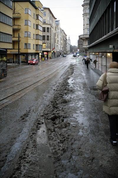 Обыкновенная слякоть / Фото из Финляндии