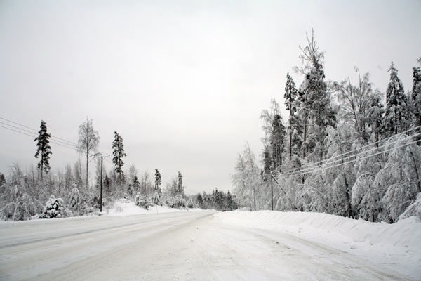 Заснеженная проселочная дорога / Фото из Финляндии