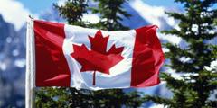 Флаг канады gettyimages