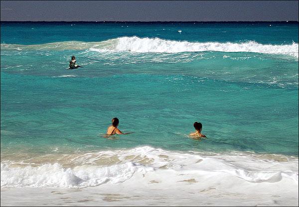 Лана, Таня и пеликан / Фото с Кубы