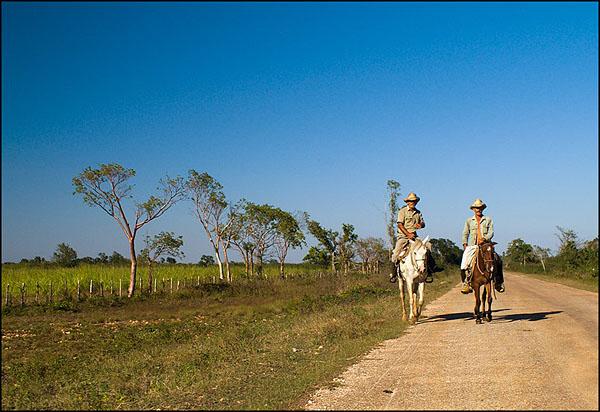 Кубинские ковбои / Фото с Кубы