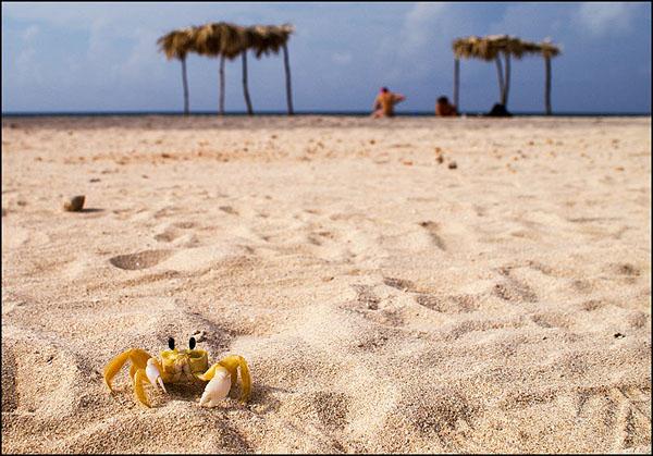 Пляж Анкон / Фото с Кубы