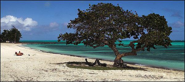 Пляж в Санта-Люсии / Фото с Кубы