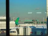 вид из окон аэропорта JFK в Нью-Йорке / США