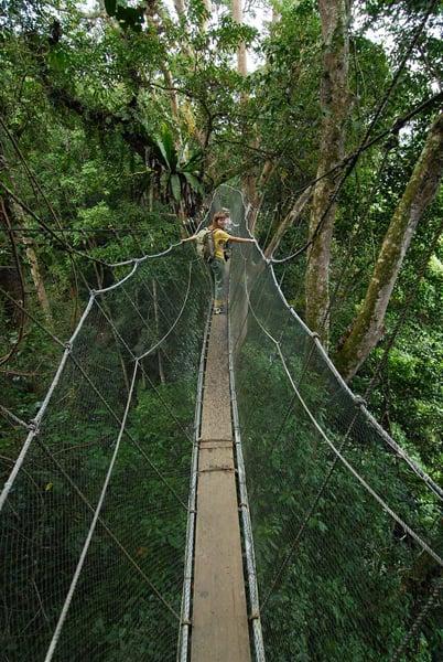 Подвесной мост / Фото из Малайзии