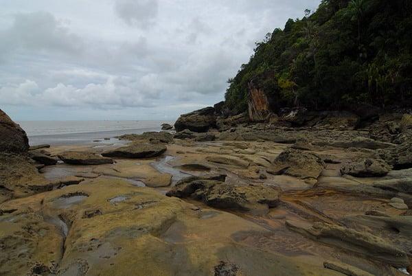 Соки деревьев проточили камни / Фото из Малайзии