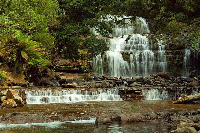 Водопад Liffey Falls / Фото из Австралии